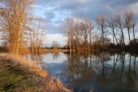 Hrdibořické rybníky