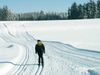 Hamerský okruh na Běžkách
