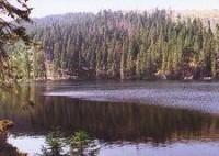 Šumava - Prášilské jezero