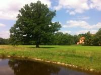 Bechyně - golfové hřiště