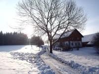 Zbudov - Samoty
