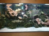 Mořské akvárium - ZOO Brno - 14.4.2012