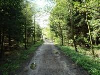 Od rozcestí u Loučského rybníku k podjezdu pod železniční tratí - 6.5.2012