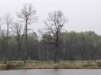 Orlová rybníky