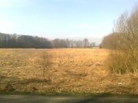 Polický rybník v okrese Šumperk
