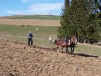Farma Kršnův dvůr