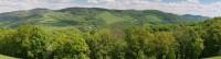 Pohled z luk u Pláňavy