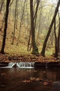 Potok Říčka