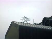 výr na streche