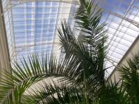 Kroměříž - skleníky v Květné zahrade