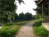 Velká Bystřice-pěšinka na břehu přehradní nádrže-Foto:Ulrych Mir.