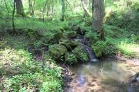 Peřeje na Rojetínském potoce