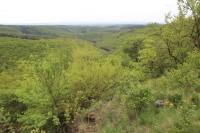 Velký Hornek - přírodní rezervace