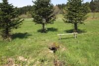 Horní les - studánka Kroupnice