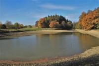 Říčky - rybník Bahňák
