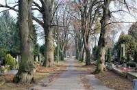 Brno - Ústřední hřbitov