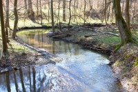 Údolí Říčky - přírodní rezervace