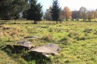 Synalovské kopaniny - přírodní památka