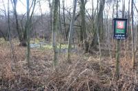 Plačkův les a říčka Šatava - přírodní rezervace
