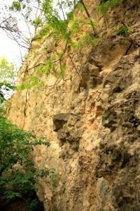 Detail skalní stěny
