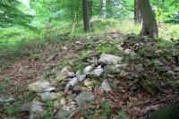Orlík - zarostlé rozpadlé zbytky základových zdí