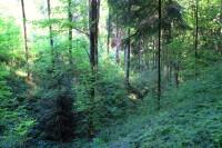 Andrlův chlum - Řehořův důl