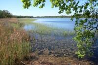 Na břehu Prostředního rybníka