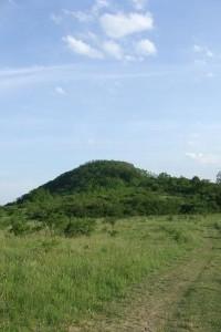 Hora Radobýl u Litoměřic