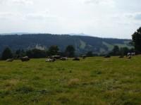 II. okruh - Jizerské hory