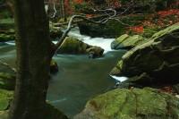 Divoký kaňon řeky Doubravy