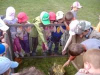 děti a kačátka