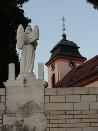 Jetřichovice - polámali mi křídla.....