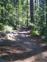 Rabštejn - přístupová cesta