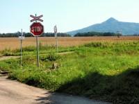 Lesní putování do Hradčan