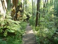 Peklo - Národní přírodní památka