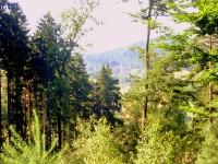 Výhled na Jitravu