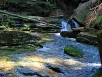 Jedlovský potok