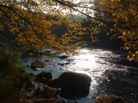 Stvořidla - přírodní rezervace na Sázavě.