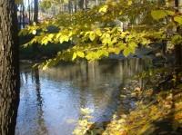 Podzimní výlet údolím Doubravy.