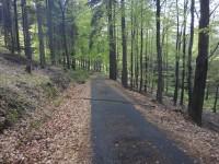 cesta k rezervaci