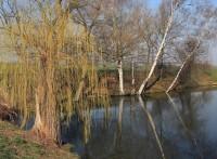 jaro na rybnících