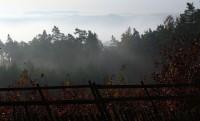 údolí Sázavy někde dole v mlze