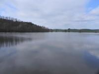 Mlynský rybník