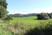Pohled od rozcestí U Křížku k severovýchodu