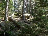 Krahulčice, vrcholová skála