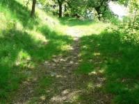 Kolinec, cesta k židovskému hřbitovu
