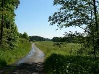 Cesta pod Prašivicí