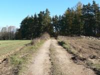 Cesta k rybníku Zákup