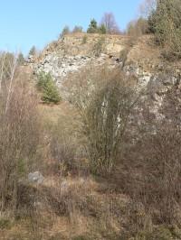 Bývalý vápencový lom u Sušice