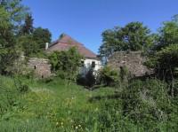 Hlavňovice, rozpadlé budovy v pozadí zámek